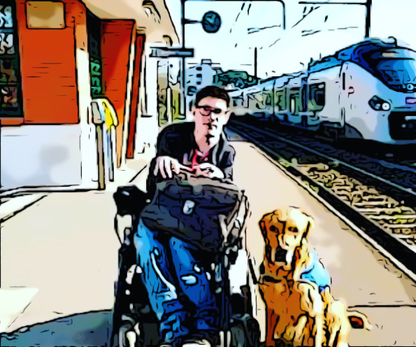trasporti disabilità